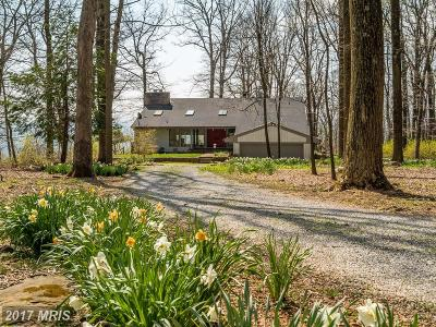 Bluemont, Paris, Middleburg, Upperville, Hamilton, Hillsboro, Lovettsville, Paeonian Springs, Purcellville, Round Hill, Waterford Single Family Home For Sale: 20634 Blueridge Mountain Road