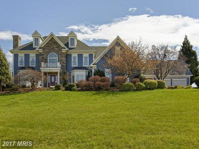 Bluemont, Paris, Middleburg, Upperville, Hamilton, Hillsboro, Lovettsville, Paeonian Springs, Purcellville, Round Hill, Waterford Single Family Home For Sale: 16080 Gold Cup Lane