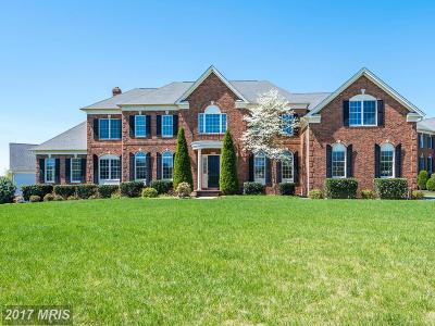 Ashburn Single Family Home For Sale: 20023 Belmont Station Drive