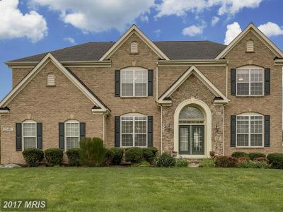 Ashburn Single Family Home For Sale: 22406 Dolomite Hills Drive