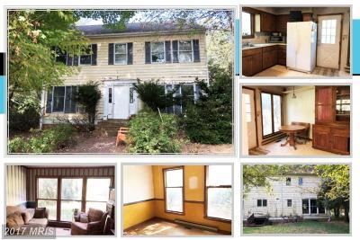 Lovettsville Single Family Home For Sale: 11698 Armistead Filler Lane