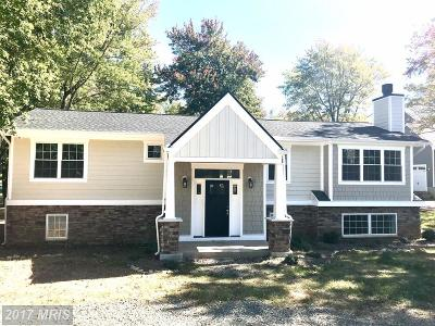 Middleburg Single Family Home For Sale: 22202 Newlin Mill Road