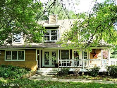 Leesburg Single Family Home For Sale: 23094 Evergreen Mills Road