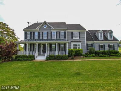 Purcellville Single Family Home For Sale: 37181 Spruce Knoll Court