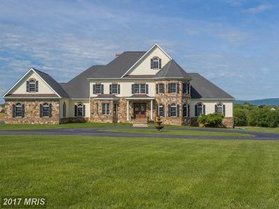 Bluemont, Paris, Middleburg, Upperville, Hamilton, Hillsboro, Lovettsville, Paeonian Springs, Purcellville, Round Hill, Waterford Single Family Home For Sale: 37861 Baker Mill Road