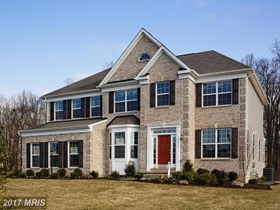 Aldie Single Family Home For Sale: Lenah Ridge Drive