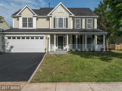 Ashburn Single Family Home For Sale: 43953 Bruceton Mills Circle
