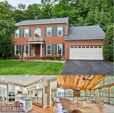Loudoun Single Family Home For Sale: 20409 Brightwater Place