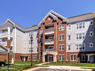 Ashburn Condo For Sale: 20655 Hope Spring Terrace #206