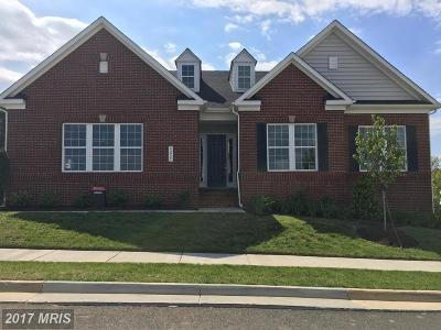 Aldie Single Family Home For Sale: 23914 Tenbury Wells Place