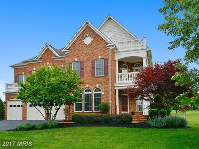 Creighton Farms, Raspberry Falls, River Creek, River Creek Land Bay Single Family Home For Sale: 16600 Ferriers Court
