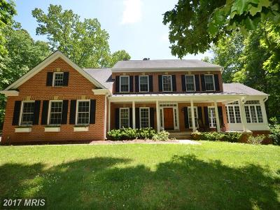 Purcellville Single Family Home For Sale: 20137 Creekspring Court