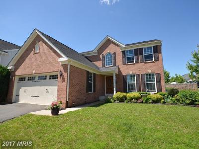 Lovettsville Single Family Home For Sale: 43 Town Center Drive