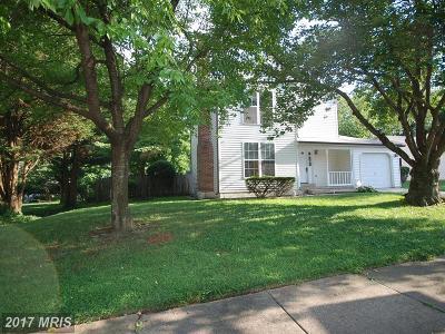 Leesburg Single Family Home For Sale: 815 Cattail Lane NE