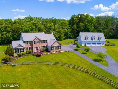 Lovettsville Single Family Home For Sale: 38689 Cassia Lane