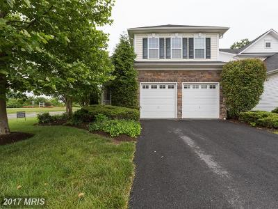 Aldie Single Family Home For Sale: 41950 Zircon Drive