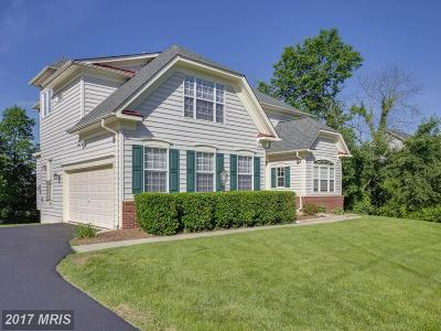 Aldie Single Family Home For Sale: 25257 Oribi Place