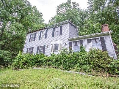 Lovettsville Single Family Home For Sale: 12872 Furnace Mountain Road