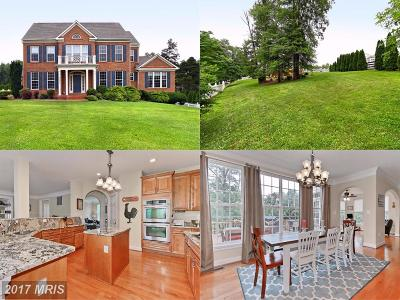 Aldie Single Family Home For Sale: 42274 Hiddenwood Lane