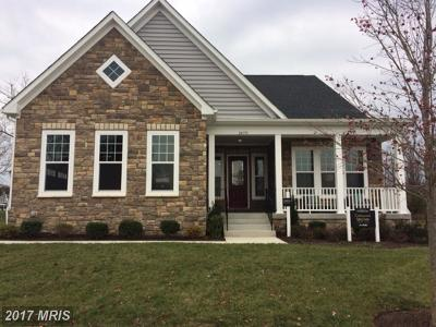 Loudoun Single Family Home For Sale: 24751 Arapahoe Basin Place