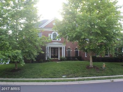 Chantilly Single Family Home For Sale: 25709 Summerbank Court