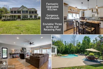 Purcellville Single Family Home For Sale: 14218 Mountain Road
