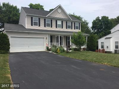 Purcellville Single Family Home For Sale: 741 Sturbridge Court