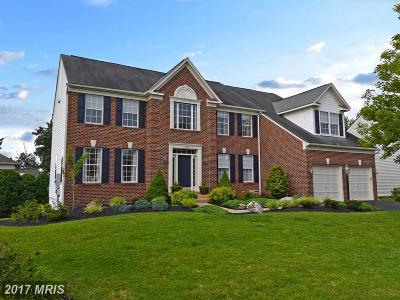 Leesburg Single Family Home For Sale: 43175 Parkers Ridge Drive