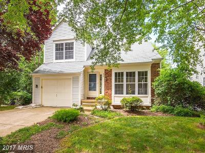 Leesburg Single Family Home For Sale: 829 Catoctin Circle NE