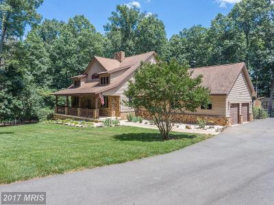 Leesburg Single Family Home For Sale: 41325 Red Hill Road