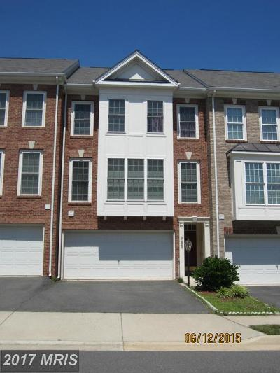 Ashburn Rental For Rent: 21840 Ladyslipper Square