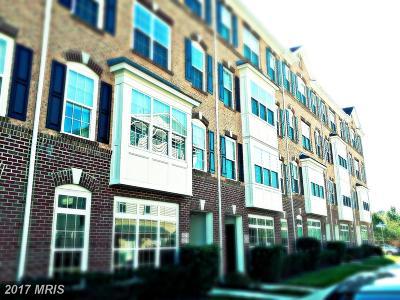 Ashburn Townhouse For Sale: 42537 Highgate Terrace