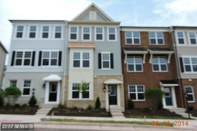 Chantilly Condo For Sale: 44016 Etna Terrace