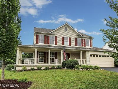 Leesburg Single Family Home For Sale: 601 Michael Patrick Court SE