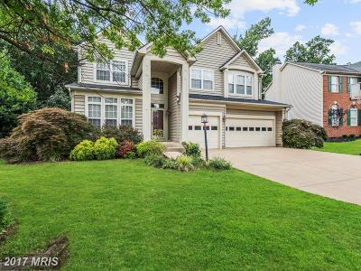 Ashburn Single Family Home For Sale: 43913 Felicity Place