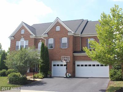 Aldie Single Family Home For Sale: 24951 Big Belt Court