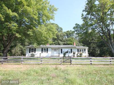 Culpeper Single Family Home For Sale: 3279 Thoroughfare Road