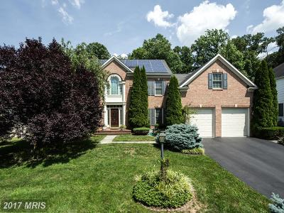 Gaithersburg Single Family Home For Sale: 18624 Reliant Drive
