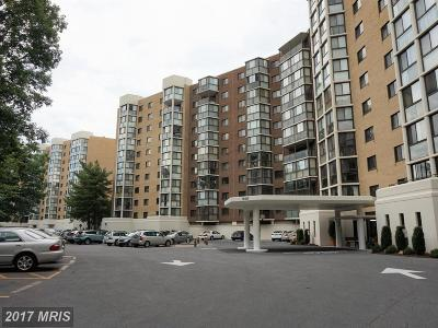 Silver Spring Condo For Sale: 15107 Interlachen Drive #209