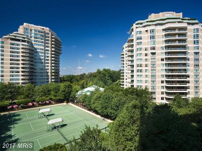 Chevy Chase Condo For Sale: 5610 Wisconsin Avenue #1503