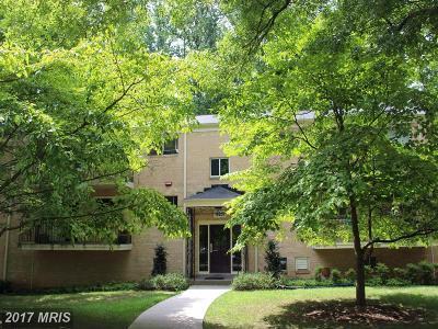 Montgomery Condo For Sale: 10625 Montrose Avenue #202