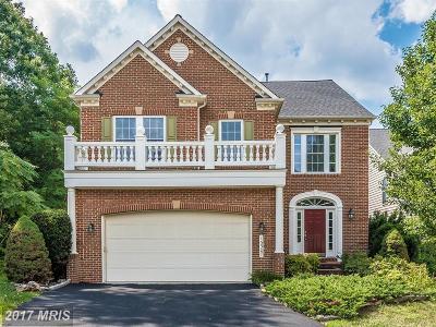 Clarksburg Single Family Home For Sale: 13307 Catawba Manor Way