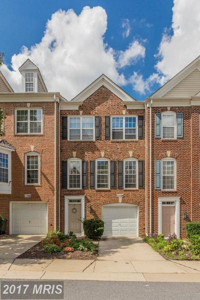 Silver Spring Condo For Sale: 11508 Pittsford Glen Way