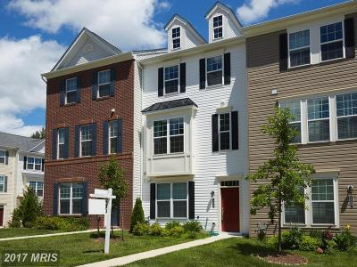 Germantown Townhouse For Sale: 18469 Mateny Road