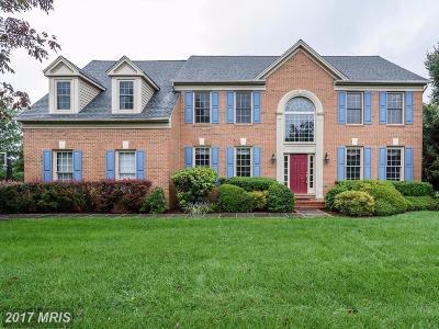 Darnestown Single Family Home For Sale: 14213 Cervantes Avenue