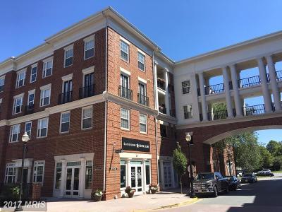 Gaithersburg Condo For Sale: 8 Granite Place #461