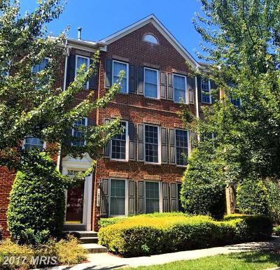 Clarksburg Townhouse For Sale: 12723 Piedmont Trail Road