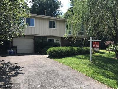 Single Family Home For Sale: 11508 Alcinda Lane