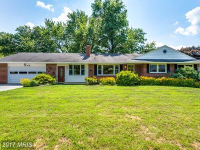 Clarksburg Single Family Home For Sale: 14308 Lewisdale Road