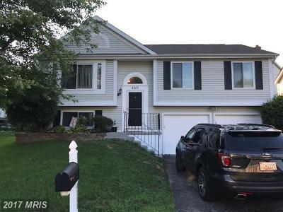 Burtonsville Single Family Home For Sale: 4300 Cedar Tree Lane
